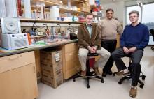 Hemophilia Grant recipients: Herzog, Srivastava, Zolotukhin