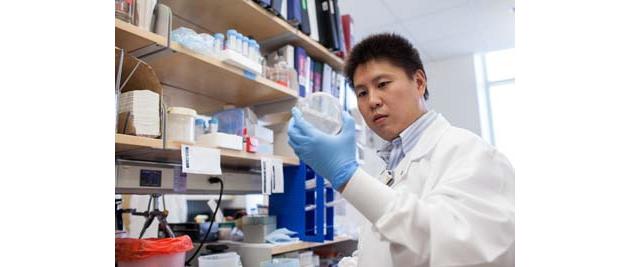 Chen Ling, Ph. D.